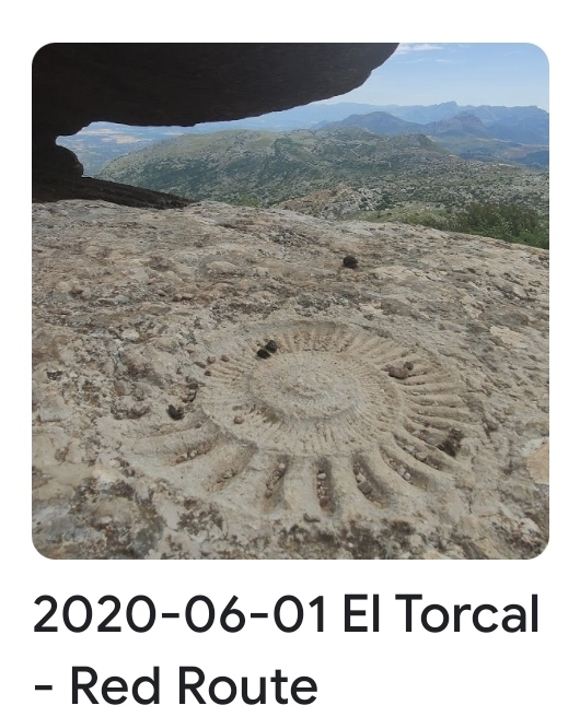 2020 06 01 torcal red